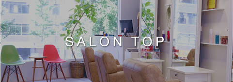 salon top