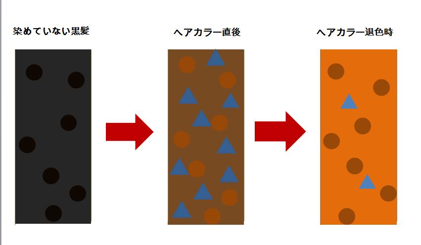 なぜ、私達日本人の髪の毛は ヘアカラーが退色するとオレンジになってしまうのでしょうか? オレンジになる理由と対処法をお教えします