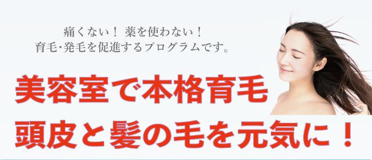 SnapCrab_NoName_2020-9-13_17-25-26_No-00